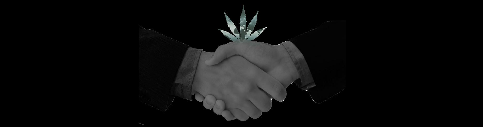 cannabis_image_slider